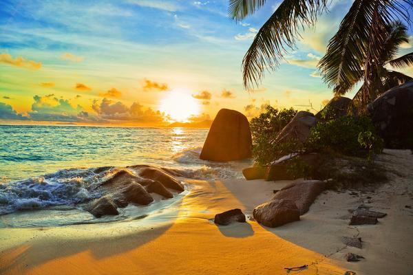 ms hamburg kreuzfahrt 2016 malediven seychellen inkl flug plantours kreuzfahrt. Black Bedroom Furniture Sets. Home Design Ideas